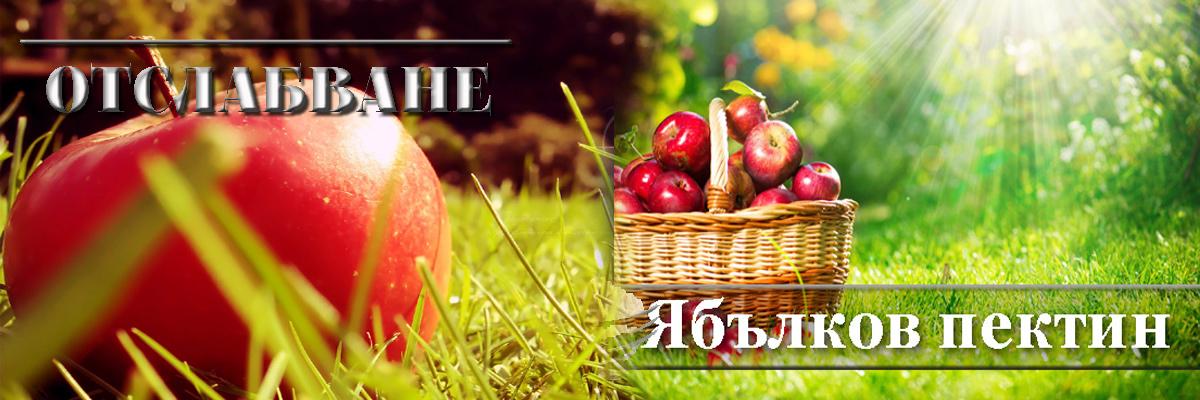Ябълков пектин за отслабване и при запек за прочистване на храносмилателната система