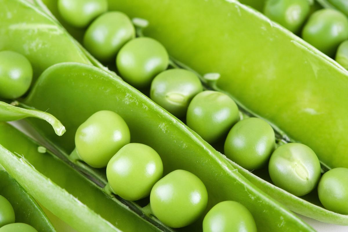 Протеин от грах за вегетарианци