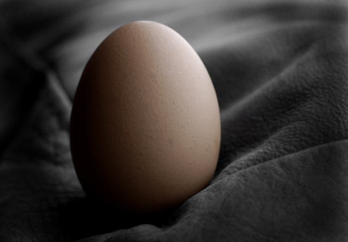 Какво още съдържа яйцето, има ле протеин в яйчния жълтък?