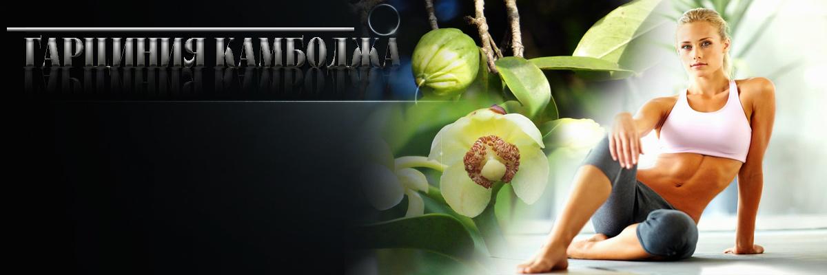 Garcinia cambogia билка, Гарциния Камбоджа за отслабване. Има ли странични ефекти и противопоказания. Цена в аптека на капсули от др грийн.