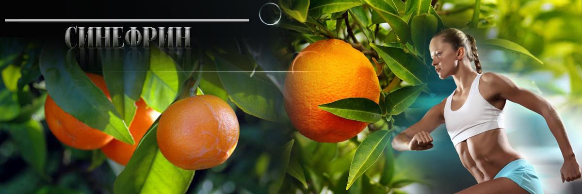 Екстракт от горчив портокал има сходни ефекти с ефедрин ,по отношение на прилив на енергия и ускоряване на метаболизма,което е от основно значение за изгарянето на мазнини и отслабване