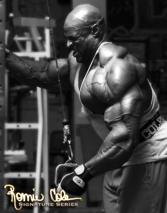 triceps_trenirovki