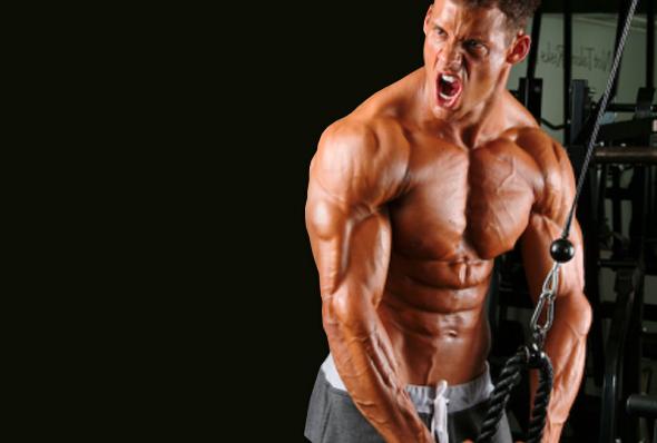 упражнения и тренировки за трицепс