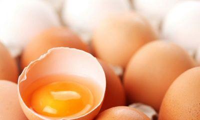 Топ новини за Фитнес » Диети » Вреден ли е жълтъка на яйцата » Форум » Мнения