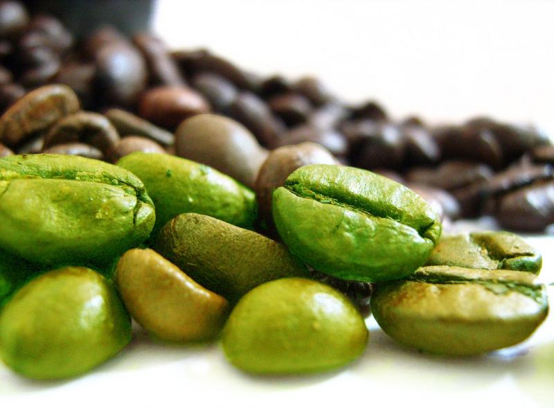 Топ новини за Фитнес » Диети » Зелено кафе-как да отслабваме без да гладуваме? » Форум » Мнения