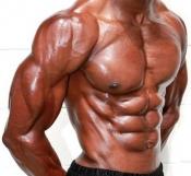 Полезна информация - Бавен или бърз метаболизъм