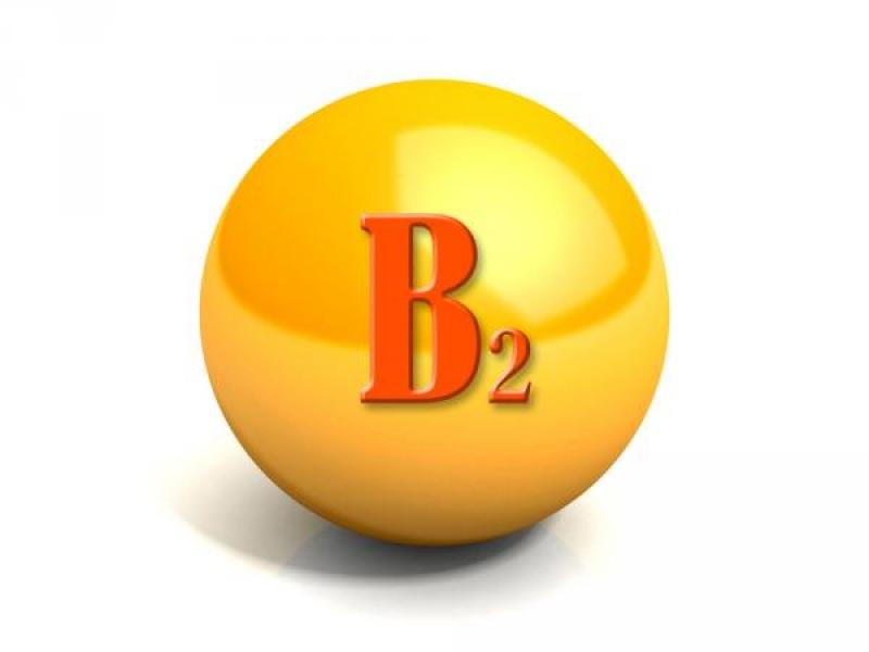 Топ новини за Фитнес » Диети » Витамин B2-кратък справочник » Форум » Мнения