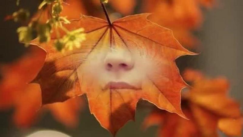 Топ новини за Фитнес » Диети » Защо през есента сме по-унили? » Форум » Мнения