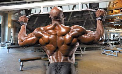 Топ новини за Фитнес » Диети » Гръб-самостоятелно или с друга мускулна група » Форум » Мнения
