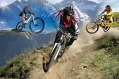 Топ новини за Фитнес » Диети » Хранителни добавки за Планинско колоездене » Форум » Мнения