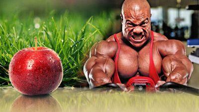 Урсолова киселина - Ursolic Acid за мускулна маса