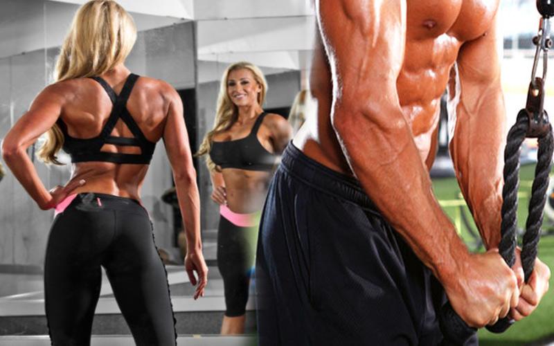 Топ новини за Фитнес » Диети » Забързване на метаболизъм » Форум » Мнения