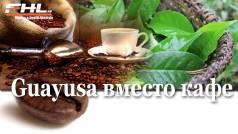 Топ новини за Фитнес » Диети » Guayusa замества кафето » Форум » Мнения