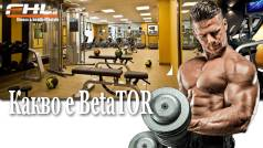 Топ новини за Фитнес » Диети » Какво е BetaTOR » Форум » Мнения