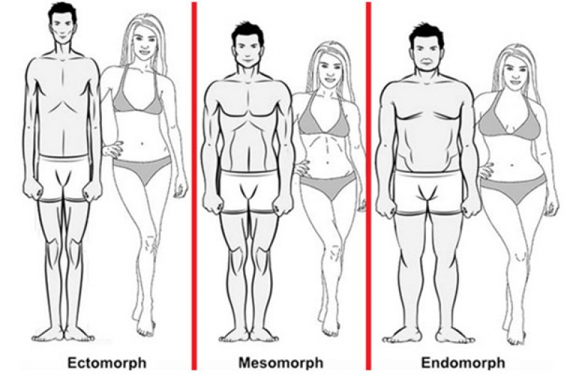 Има ли връзка напълняването с типа вашето тяло?
