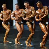 Топ новини за Фитнес » Диети » Четирима шампиони на завършилото Европейско първенство по културизъм 2011 » Форум » Мнения
