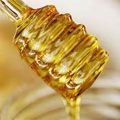 Топ новини за Фитнес » Диети » Да си произведем биологичен мед » Форум » Мнения