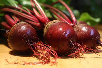 Топ новини за Фитнес » Диети » Сок от червено цвекло за издръжливост  » Форум » Мнения