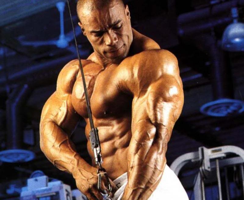 Топ новини за Фитнес » Диети » Упражнения за Трицепс  » Форум » Мнения