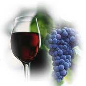 Топ новини за Фитнес » Диети » 4 дневна диета с грозде » Форум » Мнения