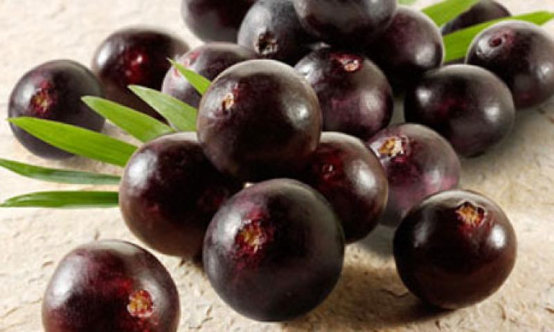 Топ новини за Фитнес » Диети » 12 ползи от приема на Акай бери-Acai Berry » Форум » Мнения