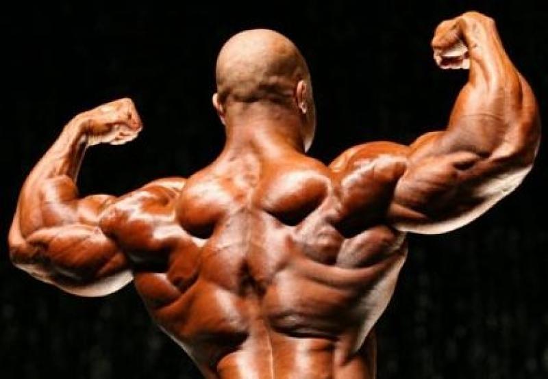 Топ новини за Фитнес » Диети » Упражнения за гръб » Форум » Мнения