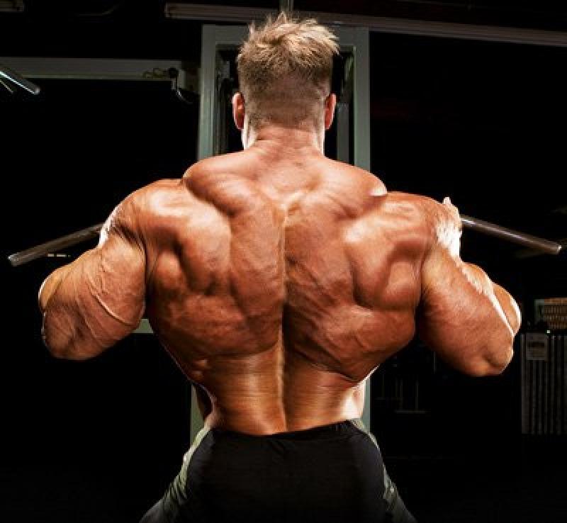 Топ новини за Фитнес » Диети » Тренировка за гръб | Програма за гръб | Голям гръб |  » Форум » Мнения