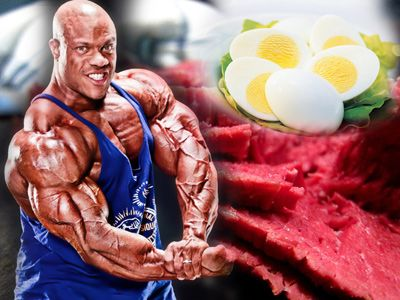 Топ новини за Фитнес » Диети » Най-добрите протеинови източници » Форум » Мнения