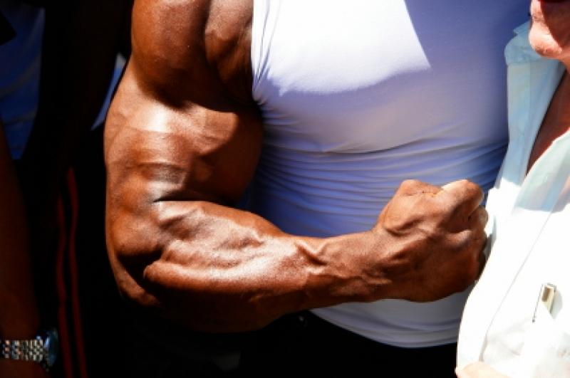 Топ новини за Фитнес » Диети » Течен аргинин за екстремно напомпване и сила » Форум » Мнения
