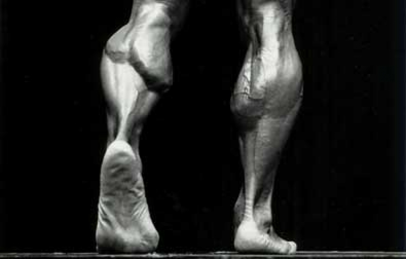 Топ новини за Фитнес » Диети » Упражнения за прасец » Форум » Мнения