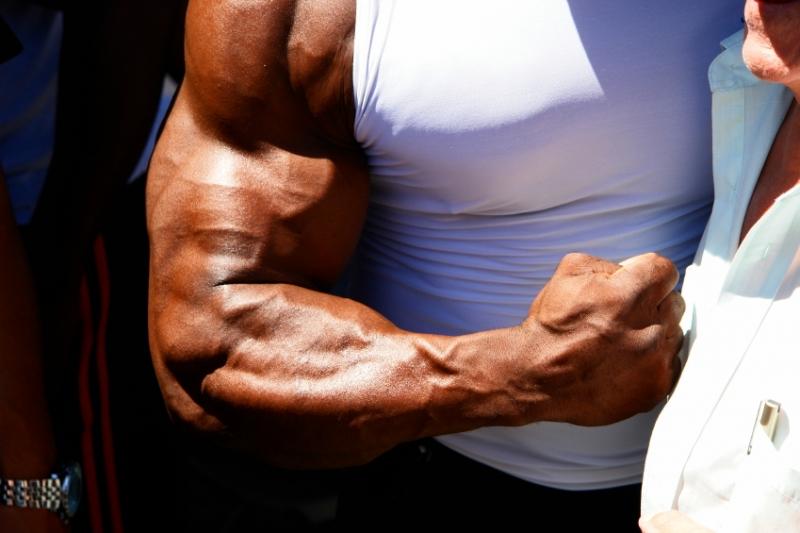 Топ новини за Фитнес » Диети » Мускули на предмишницата  » Форум » Мнения