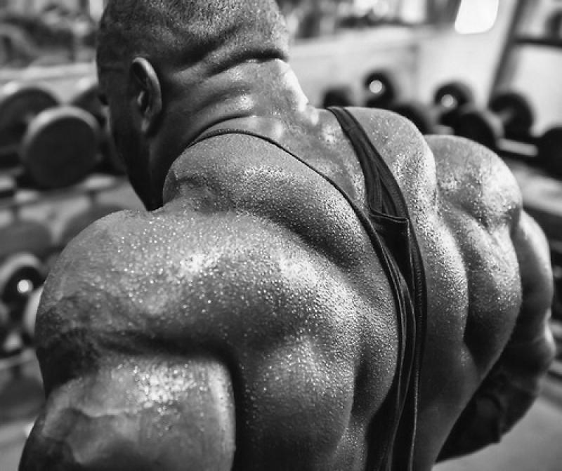 Топ новини за Фитнес » Диети » Мускули на рамото -Делтовидни мускули » Форум » Мнения