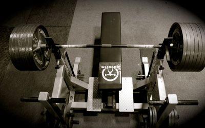 Топ новини за Фитнес » Диети » Левцин за мускулна маса и сила » Форум » Мнения
