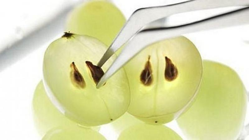 Топ новини за Фитнес » Диети » Екстракт от гроздово семе » Форум » Мнения