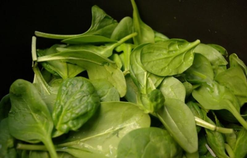 Топ новини за Фитнес » Диети » Спанак - полезна и диетична храна » Форум » Мнения