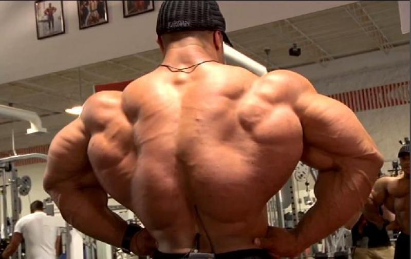 Топ новини за Фитнес » Диети » Как да тренираме гръб в къщи? » Форум » Мнения