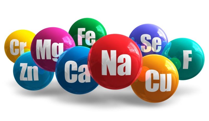 Топ новини за Фитнес » Диети » Хранителни източници и функции на минералите » Форум » Мнения