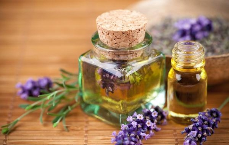 Топ новини за Фитнес » Диети » Ароматотерапия и етерични масла » Форум » Мнения