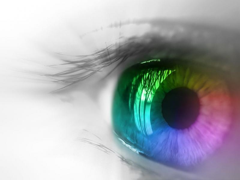 Топ новини за Фитнес » Диети » Храни и добавки за добро зрение » Форум » Мнения