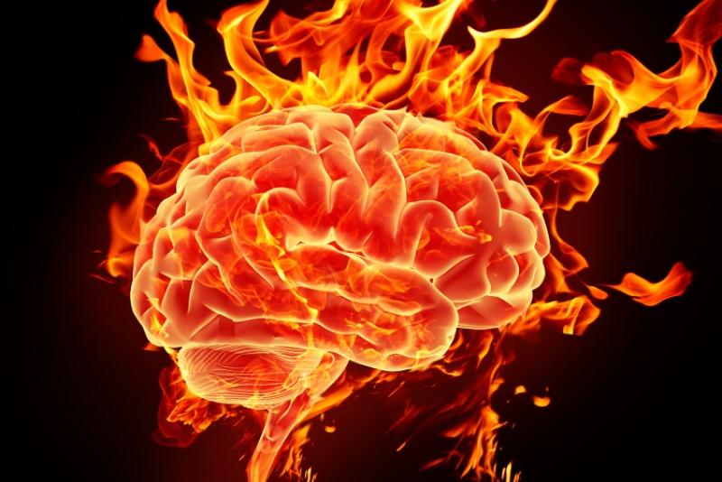 Топ новини за Фитнес » Диети » Проблеми с паметта и концентрацията   » Форум » Мнения