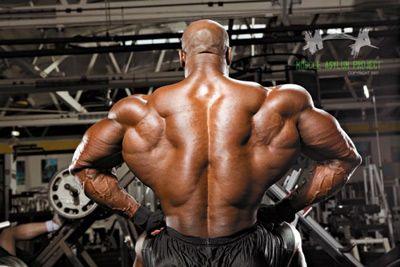 Топ новини за Фитнес » Диети » Тренировъчна програма за мускулна маса: Седмица 1 » Форум » Мнения