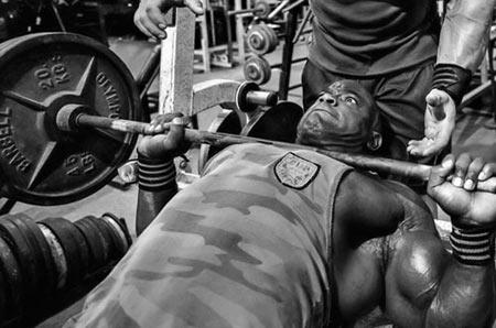 Полезна информация - Фитнес тренировка за гърди