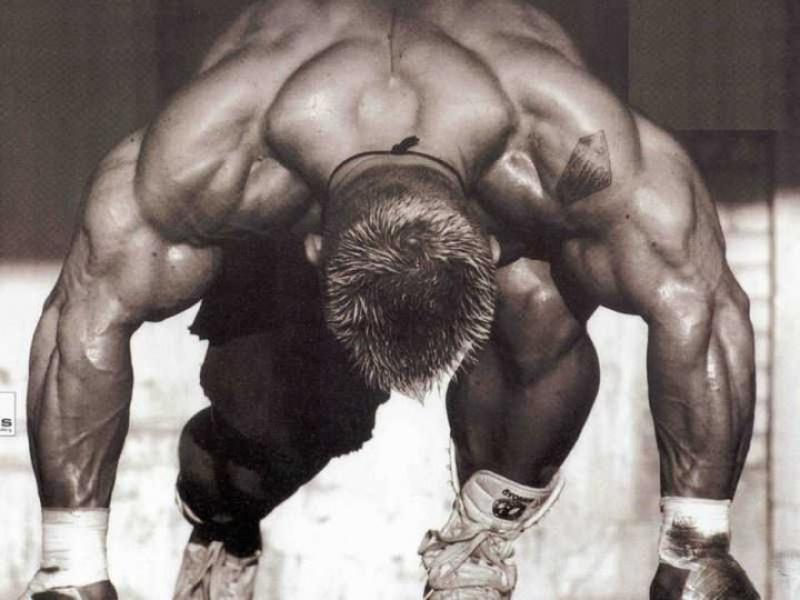 Топ новини за Фитнес » Диети » Мега доза за мега мускулна маса от AMIX » Форум » Мнения
