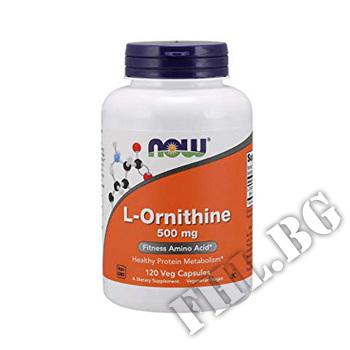 Съдържание » Цена » Прием » L-Ornithine 500 mg 120 caps