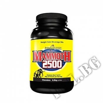 Действие на Mammoth Gainer - 2.2 кг - Шоколад мнения.Най-ниска цена от Fhl.bg-хранителни добавки София