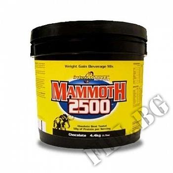 Съдържание » Цена » Прием » Mammoth Gainer - 4.4 кг - Шоколад Ванилия…