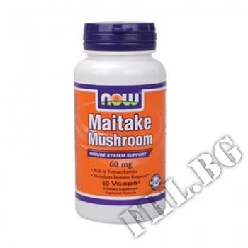 Съдържание » Цена » Прием » Maitake Mushrooms