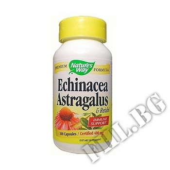 Съдържание » Цена » Прием » Echinacea & astragalus & reishi