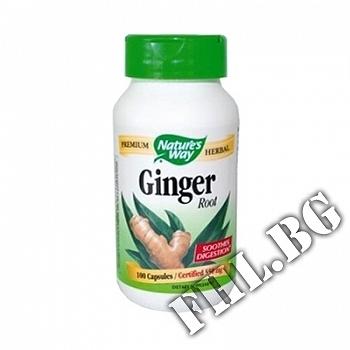 Действие на Джинджифил (корен)|Ginger мнения.Най-ниска цена от Fhl.bg-хранителни добавки София