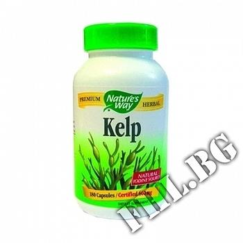 Действие на Kelp 660 mg 180 caps мнения.Най-ниска цена от Fhl.bg-хранителни добавки София